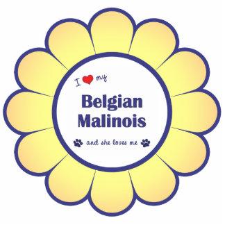 Amo a mi Malinois belga (el perro femenino) Esculturas Fotográficas