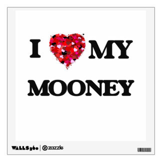 Amo a MI Mooney
