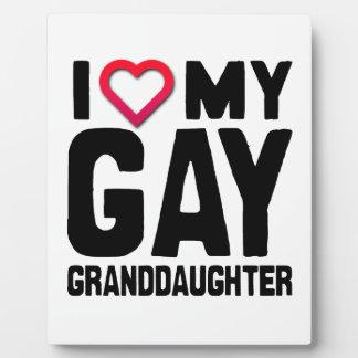 AMO A MI NIETA GAY - .PNG PLACAS CON FOTOS