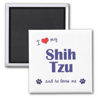 Amo a mi Shih Tzu (el perro masculino) Imán Cuadrado