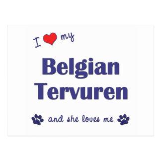Amo a mi Tervuren belga el perro femenino Postales