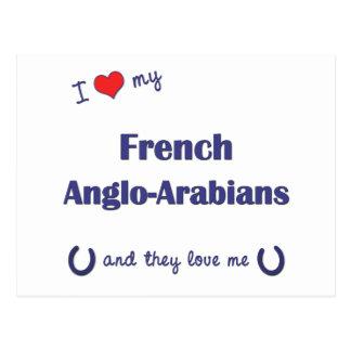 Amo a mis Anglo-Árabes franceses (los caballos Tarjetas Postales