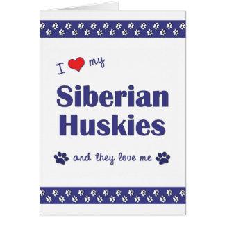 Amo a mis huskyes siberianos (los perros múltiples tarjeta pequeña