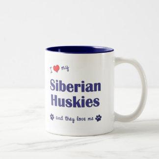 Amo a mis huskyes siberianos (los perros taza de dos tonos