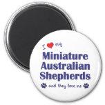 Amo a mis mini pastores australianos (los perros m imán para frigorifico