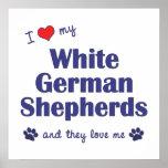 Amo a mis pastores alemanes blancos (los perros mú poster