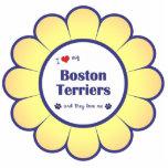 Amo a mis terrieres de Boston (los perros múltiple Escultura Fotográfica