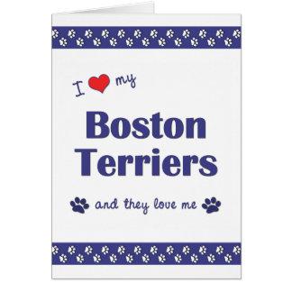 Amo a mis terrieres de Boston (los perros múltiple Tarjeta Pequeña
