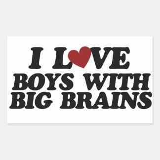 Amo a muchachos con los cerebros grandes pegatina rectangular