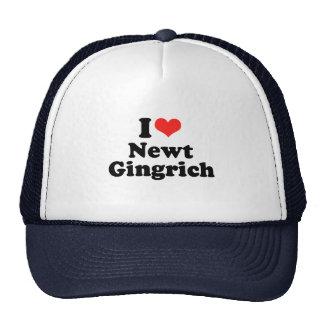 Amo a Newt Gingrich Gorros