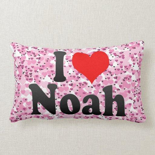 Amo a Noah Almohadas