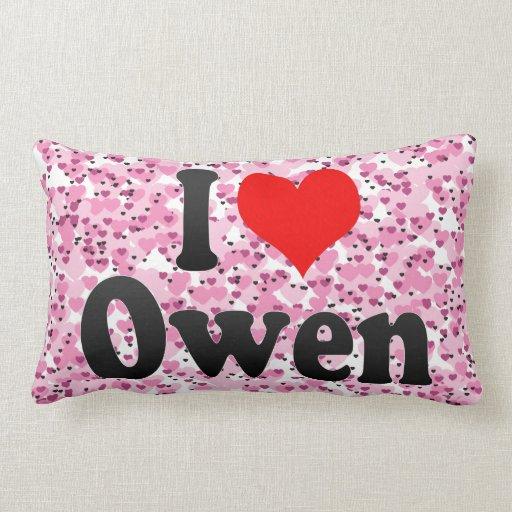 Amo a Owen Almohada