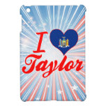 Amo a Taylor, Nueva York