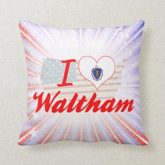 Amo a Waltham, Massachusetts Cojines