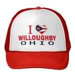 Amo a Willoughby, Ohio Gorra