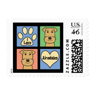Amo Airedales