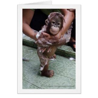 Amo al bebé Jackat de los orangutanes Tarjeta Pequeña