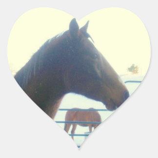 Amo al pegatina de los caballos