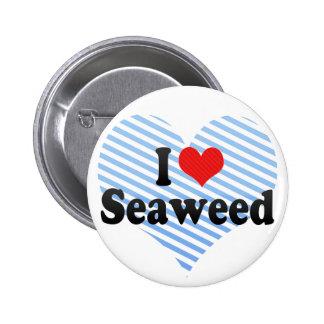 Amo alga marina pin