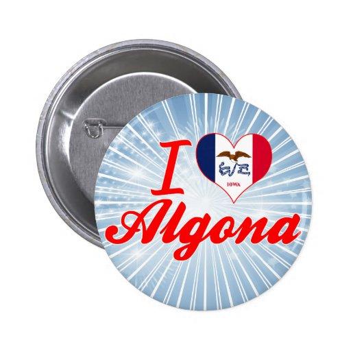 Amo Algona, Iowa Pin