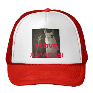 ¡Amo alpacas! Gorras De Camionero