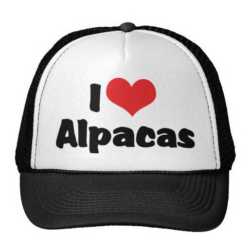 Amo alpacas gorras de camionero