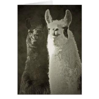 ¡Amo alpacas! Tarjeta De Felicitación