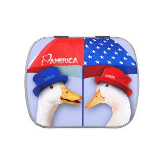 Amo América. Los patos divertidos diseñan las Jarrones De Dulces