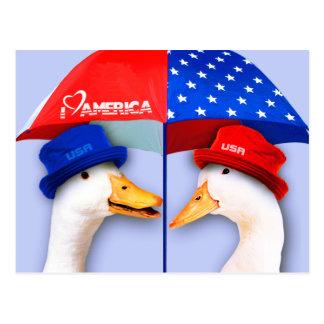 Amo América. Postales patrióticas de los E.E.U.U.
