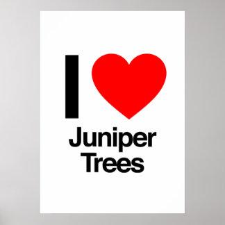 amo árboles del enebro impresiones