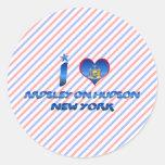 Amo Ardsley en el Hudson, Nueva York Pegatina Redonda