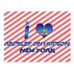 Amo Ardsley en el Hudson, Nueva York Postales