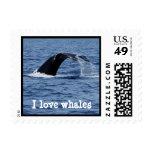 Amo ballenas
