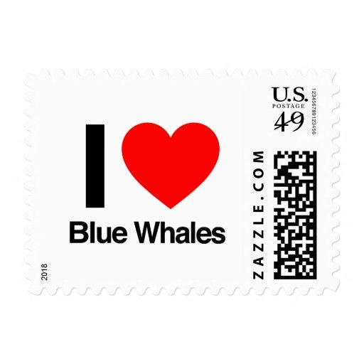 amo ballenas azules
