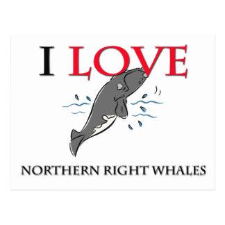 Amo ballenas derechas septentrionales postal