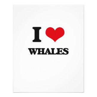 Amo ballenas tarjetas informativas