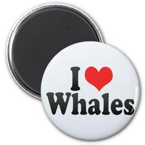 Amo ballenas imán para frigorífico