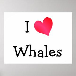 Amo ballenas póster