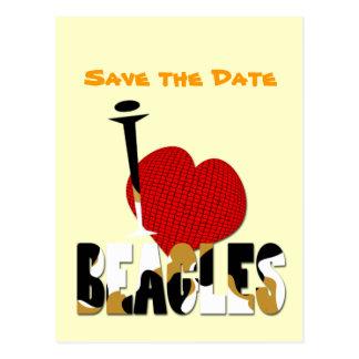 Amo beagles tarjetas postales
