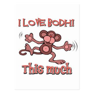 Amo Bodhi Postal