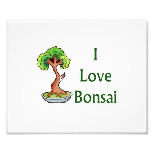 Amo bonsais en graphi verde del árbol del shari de fotografía