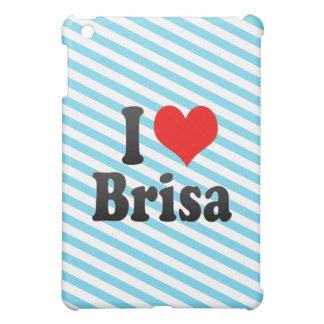 Amo Brisa