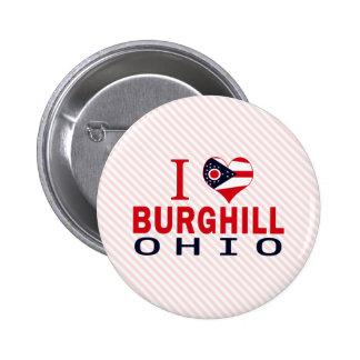 Amo Burghill, Ohio Pin