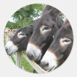 ¡Amo burros! Etiqueta Redonda