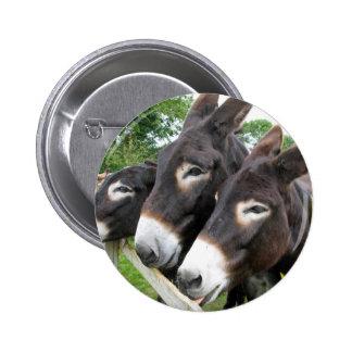 ¡Amo burros! Pins
