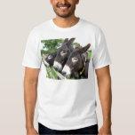 ¡Amo burros! Polera