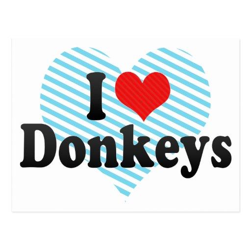 Amo burros postales