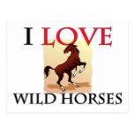 Amo caballos salvajes postal