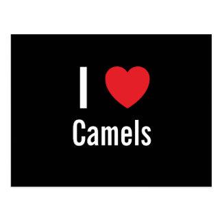 Amo camellos tarjeta postal