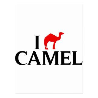 Amo camellos tarjetas postales